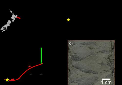 Dai mari della Nuova Zelanda una importante scoperta sul rapporto tra materiali argillosi e terremoti